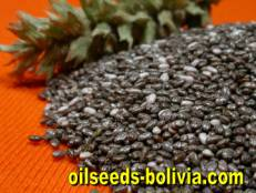chia oil seeds