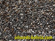 omega 3 and 6 chia seeds